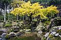 Suwa Yakata-ato Garden of Ichijodani Asakura Family Historic Ruins04s3s4592.jpg