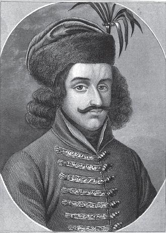 Regent of Hungary - Mihály Szilágyi, Regent in 1458