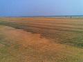Talasari beach Baleswara Odisha India.jpg