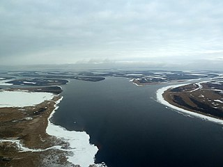 Yamalagydanskaja tundra Ecoregion (WWF)