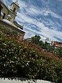 Templo de San Francisco El Grande 06232013 074.JPG