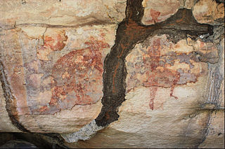 Termite tunnel over red wallaby and goanna