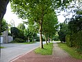 Tervuren Albertlaan straatbeeld - 218274 - onroerenderfgoed.jpg