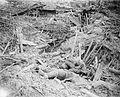 The Battle of Messines, June 1917 Q5466.jpg