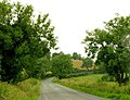 The Black Bog Road near Kinallen - geograph.org.uk - 878670.jpg