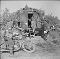The British Army in Italy 1944 NA11749.jpg