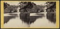 The Falls, from the Basin or Whirpool, from Robert N. Dennis collection of stereoscopic views 4.png