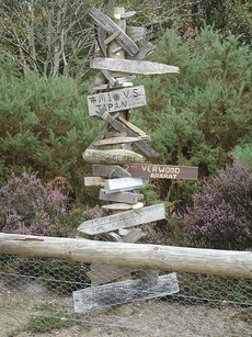 signpost with several signs on top of each other