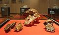 The cranium of an Australopithecus africanus (3967774317).jpg