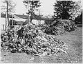 This pile of clothes belonged to prisoners of the Dachau concentration camp.jpg