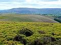 Three layers of landscape - geograph.org.uk - 1300272.jpg