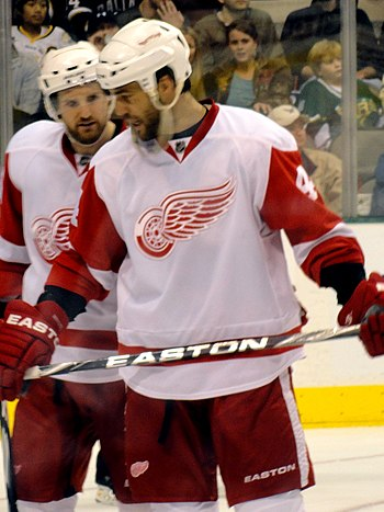 Detroit Red Wings forward Todd Bertuzzi during...