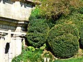 Topiary, Dyrham Park (geograph 2629700).jpg