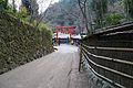 Toriimoto01s3200.jpg