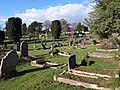 Torquay cemetery - geograph.org.uk - 1769939.jpg