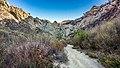 Towsley Canyon (15461721337).jpg