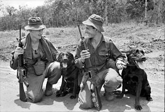 7th Battalion, Royal Australian Regiment - 7 RAR tracker dogs and their handlers in South Vietnam, 1967