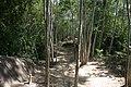 Trail (3745786215).jpg