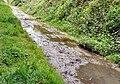 Trans Pennine Trail - geograph.org.uk - 1306177.jpg