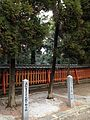 Trees planted by Kikuko, Princess Takamatsu and Nobuhito, Prince Takamatsu in Kashii Shrine.jpg