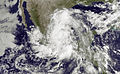 Tropical Storm Arlene jun 30 2011 1445Z.jpg