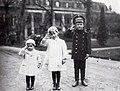 Tsesarevich Alexei with his Hessian cousins.jpg