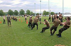 Tug of war 2.jpg