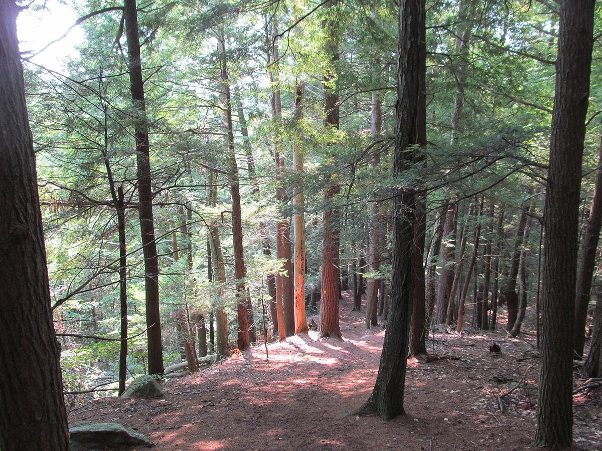 Camping Reservations Long Island Ny