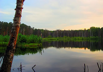 Pavlovsky District, Nizhny Novgorod Oblast - Lake Tumbotinskoye in Pavlovsky District