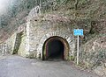 Tunnel on the mineral line, Saundersfoot - geograph.org.uk - 1691995.jpg