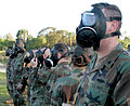 US Navy 090128-N-4962F-038 Seabees test their masks before entering the confidence chamber.jpg