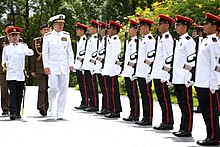 US Navy Adm. Mike Mullen reviews Singapore Armed Forces at the Istana, Singapore - 20080529 (080530-N-0696M-090).jpg