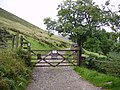 Uldale Commons - geograph.org.uk - 654030.jpg