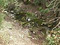 Un arroyo con agua fresca, Mallorca - panoramio.jpg
