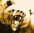 Urso Xiong2.jpg