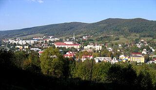 Gmina Ustrzyki Dolne Gmina in Subcarpathian Voivodeship, Poland