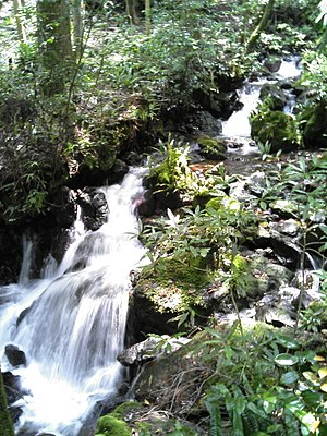 Seiyo, Ehime - A small waterfall of Kannon Spring Water