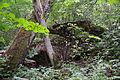 Võhksa ohvrikivi ehk Nõiakivi (foto nr 3).JPG