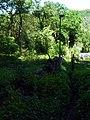 V Sedlci, pěšina od lesa.jpg