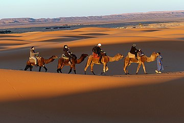 Vacations - Camel ride in Sahara Desert (Morroco).jpg