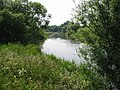 View along the River Stour - geograph.org.uk - 461056.jpg