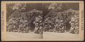 View in Central Park, from Robert N. Dennis collection of stereoscopic views 7.png