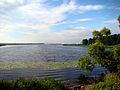 View to Vecdaugava (South) from Mangalu prospekts - panoramio.jpg