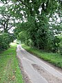 View west along the lane to Low Common - geograph.org.uk - 1440641.jpg
