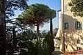 Villa Barberini Pontifical Gardens, Castel Gandolfo (46080561604).jpg