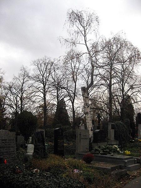 File:Vinohradské hřbitovy.jpg