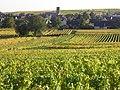 Vue depuis les vignes (Eguisheim) (1).jpg