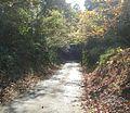 Wakashibamachi, Ryugasaki, Ibaraki Prefecture 301-0041, Japan - panoramio (4).jpg