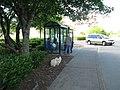Warrenton Fred Meyer bus stop - NorthWest POINT (5936813739).jpg