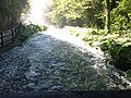 Waterfall Marmore in 2020.24.jpg